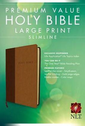 Picture of NLT Premium value LP Slimline Tutone