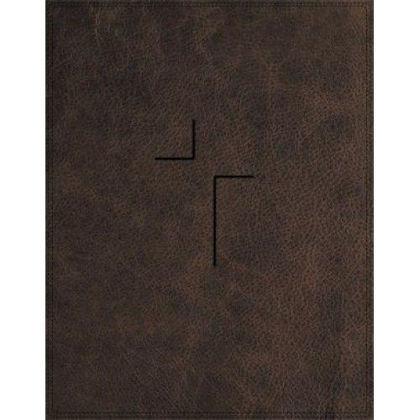Picture of NIV Jesus bible