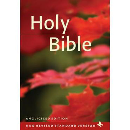 Picture of NRSV Popular text bible