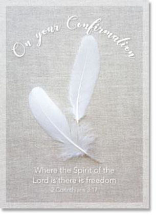 Picture of White feathers
