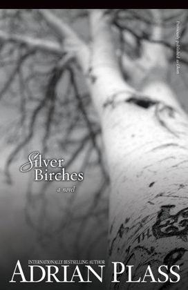 Picture of Siver birches