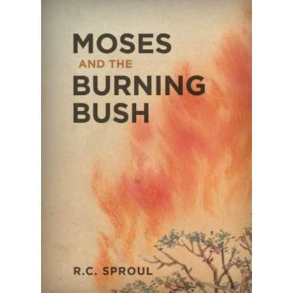 Picture of Moses and the burning bush