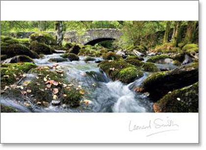 Picture of Inspire - Rushing stream