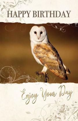 Picture of Owl - enjoy your day