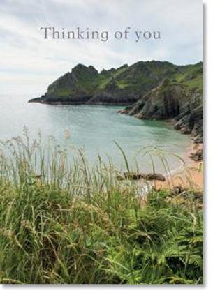 Picture of Coastal scene