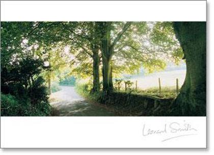 Picture of Inspire - Dorset lane