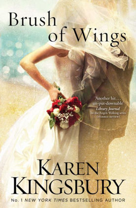 Picture of Brush of wings (Angels walking #3)
