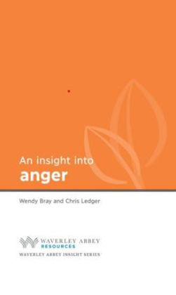 Picture of Insight into Anger
